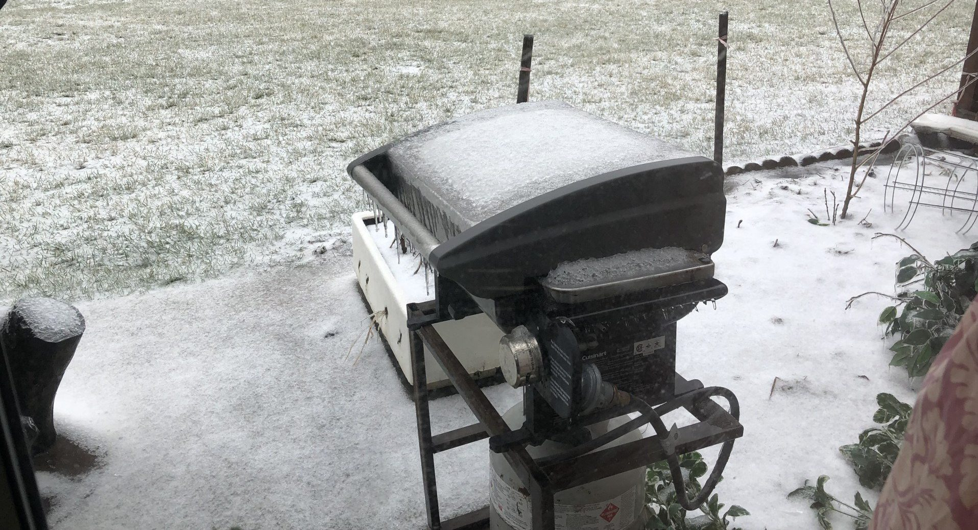 Grill Maintenance Tips For Cleaning & Winterization